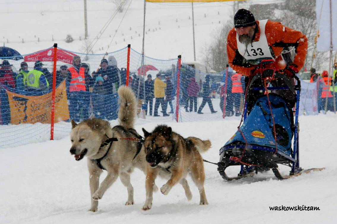 MŚWSA KANDERSTEG14-16.02.2014 cz.3 243.jpeg