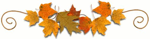 jesienne-liscie listopad.jpeg