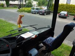 Galeria autobus
