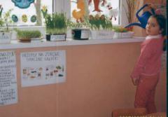 Kotlarnia -  kącik ziołowy 2.jpeg